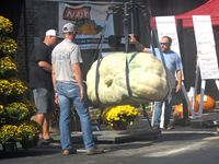Giant gourds and pumpkins attracted attention in the First Baptist Church parking lot. A crowd watched as humongous pumpkins, some topping 1,000 pounds, were mechanically hoisted onto the scales.
