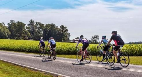The area on Oct. 6-7 will play host to the cyclists of the Mounts to the Coast ride, sponsored by Cycle North Carolina. The event starts in Sparta and follows the state's backroads to North Topsail Beach, stopping in Granville County to rest for the night after the fourth day of the trek. Contributed photo